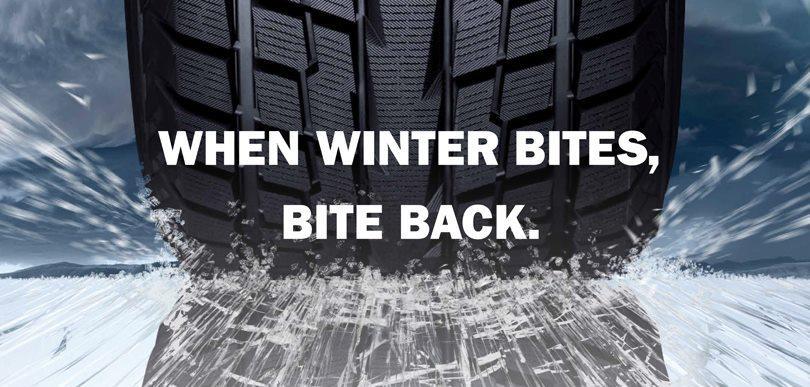 Шины зима